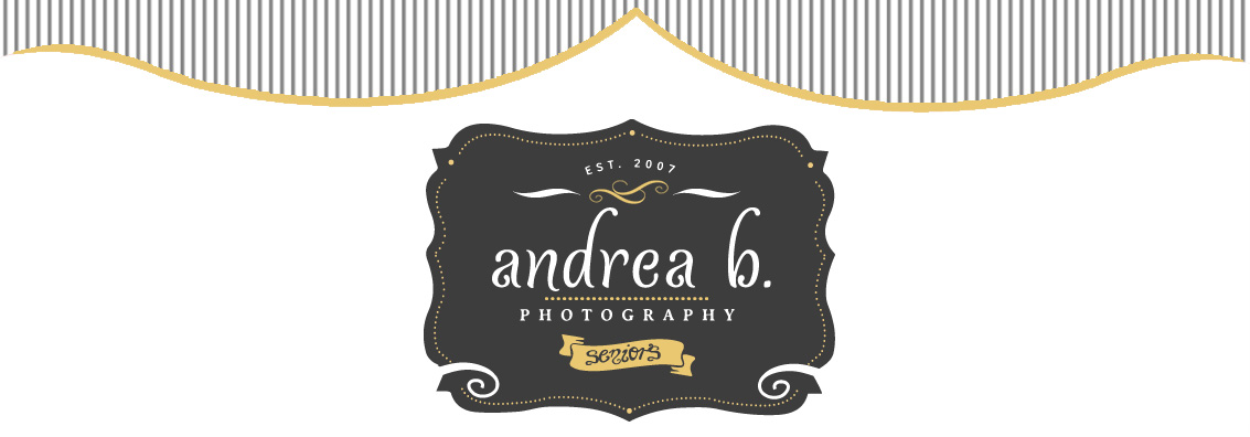 McKinney Senior Photography logo